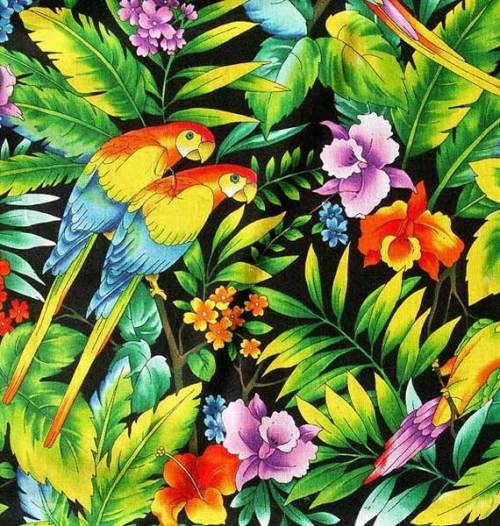 358176-Parrot-tropical-pattern-PICT1433