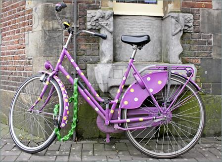 Purple-Bike-Holland-225705