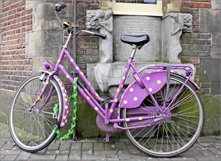 Purple-Bike-Holland-225705