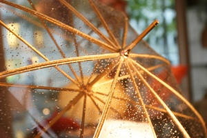 Gold-rim-umbrella1